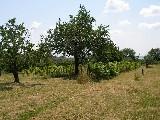 In aanbouw woning te koop in Kővágószőlős