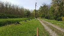 Boerderij te koop in Boldogasszonyfa, Hongarije