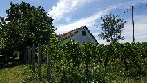 holiday house for sale in Villány, Hungary
